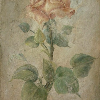 Long Stemmed Rose Fresco