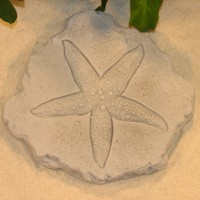 Starfish Step Stone