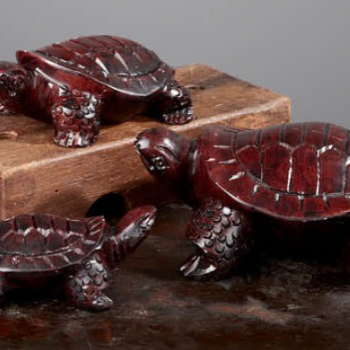 Carve Soapstone Turtles
