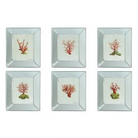 Coral Prints in Mirror Frames