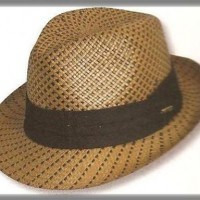 Dressy Straw Men's Hat