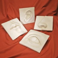 Eye, Ear, Nose, Lips Wall Sculpture Set