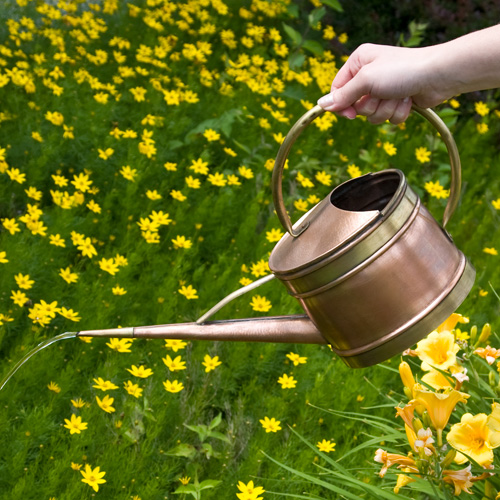 Oval Copper Watering Can