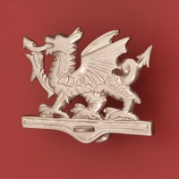 Welsh Dragon Door Knocker, nickel