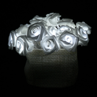 White Roses LED String Lights