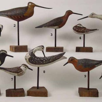 Habd-Carved Decoy Bird Collection