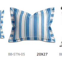 Ocean Ambiance Pillows