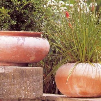 Smooth Sided Terracotta Vases