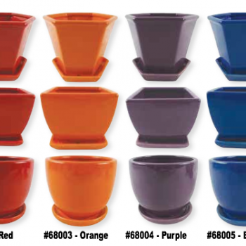 Take Your Pick Flower 5.5in Pots