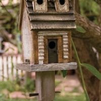 Woodland Bird House
