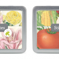 Beautiful Addition Sticky Note Sets