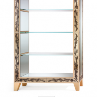Bronze Mirror Bookcase