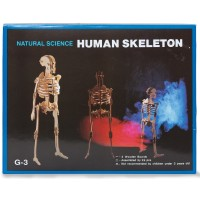 Build Your Own Woodcraft Skeleton