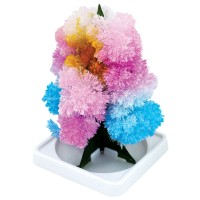 Grow Your Own Crystal Flower Tree