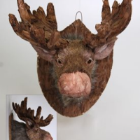 Large Stuffed Toy Moose Head