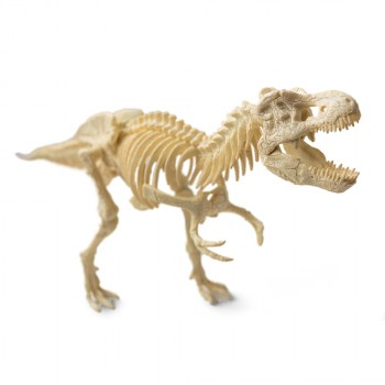 Large T-Rex Model Kit