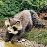 Racoon Hand Puppet
