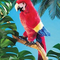 Scarlet Macaw Parrot Hand Puppet