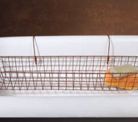 Wire Bathtub Basket