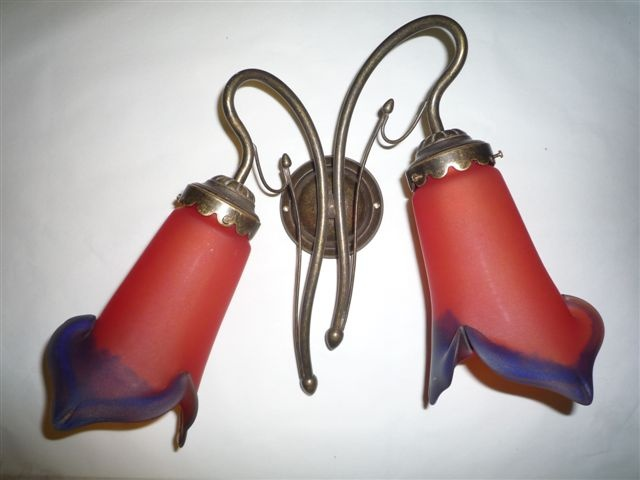 Two Red Tulips Wall Light